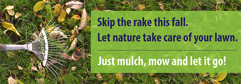 Leaves background with rake that says Mulch, Mow and Let it Go